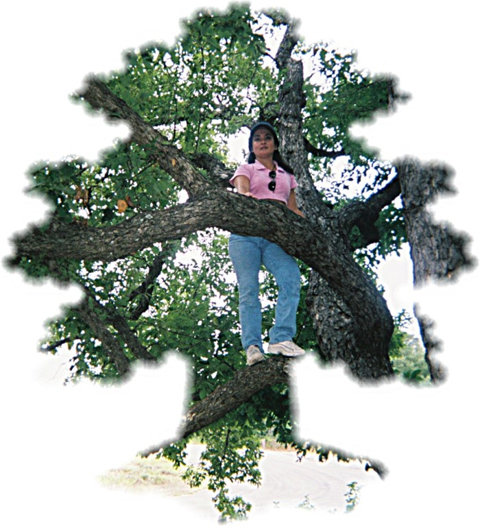 Julie up a tree