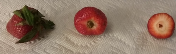 A STRAWBERRY AND ITS CORE