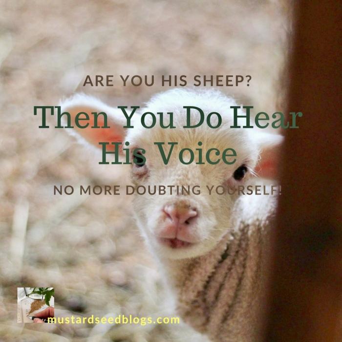 """My Sheep Hear My Voice"" (Hearing God Part1)"