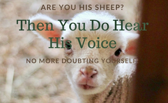 """My Sheep Hear My Voice"" (Hearing God Part 1)"